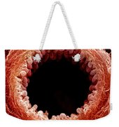 Mouse Bronchiole, Sem Weekender Tote Bag by Science Source