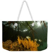 Orange Sponges Grow Weekender Tote Bag