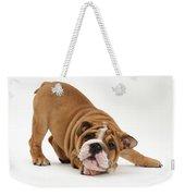 Playful Bulldog Pup Weekender Tote Bag