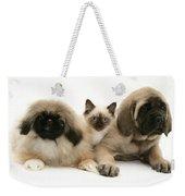 Puppies And Kitten Weekender Tote Bag by Jane Burton