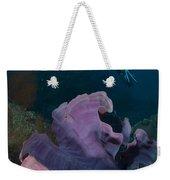 Purple Elephant Ear Sponge With Diver Weekender Tote Bag