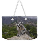 Ring-tailed Lemur Lemur Catta Mother Weekender Tote Bag