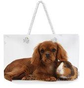 Ruby Cavalier King Charles Spaniel Pup Weekender Tote Bag