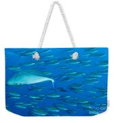 School Of Wide-band Fusilier Fish Weekender Tote Bag