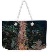 Soft Coral Seascape, Indonesia Weekender Tote Bag