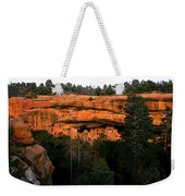 Spruce Tree House Weekender Tote Bag