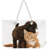 Toy Poodle Puppy With Kitten Weekender Tote Bag