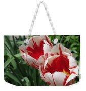 Triumph Tulip Named Carnaval De Rio Weekender Tote Bag