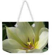 Tulip Named Perles De Printemp Weekender Tote Bag