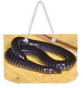 West African Caecilian Weekender Tote Bag