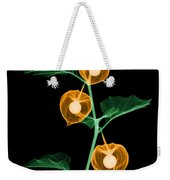 X-ray Of Chinese Lantern Plant Weekender Tote Bag