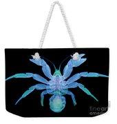 X-ray Of Coconut Crab Weekender Tote Bag