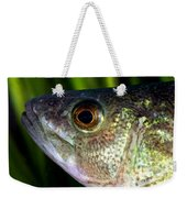 Yellow Perch Perca Flavescens Weekender Tote Bag