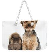 Yorkshire Terrier Dog Weekender Tote Bag