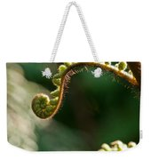Young Fern In The Morning Sun Weekender Tote Bag