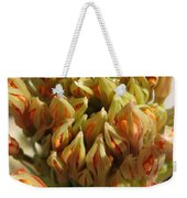 African Blood Lily Or Fireball Lily Weekender Tote Bag