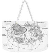 Animal Cell Diagram Weekender Tote Bag