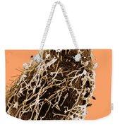 Bacteria On Sorghum Root Tip Weekender Tote Bag