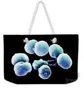 Bacteria, Streptococcus Pneumoniae, Sem Weekender Tote Bag