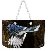 Blue Jay In Flight Weekender Tote Bag