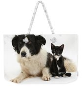 Border Collie And Tuxedo Kitten Weekender Tote Bag