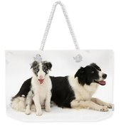 Border Collies Weekender Tote Bag