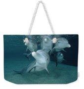 Bottlenose Dolphin Underwater Pair Weekender Tote Bag