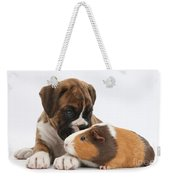 Boxer Puppy And Guinea Pig Weekender Tote Bag by Mark Taylor