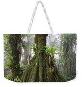 Bromeliad Bromeliaceae And Tree Fern Weekender Tote Bag by Cyril Ruoso