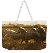 Camargue Horse Equus Caballus Group Weekender Tote Bag