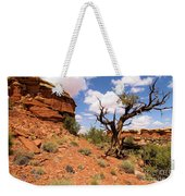 Canyonlands Needles District Weekender Tote Bag