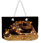 Chilean Mountains False Toad Weekender Tote Bag