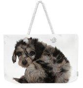 Doxie-doodle Puppy Weekender Tote Bag