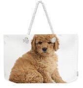 Goldendoodle Puppy Weekender Tote Bag