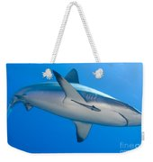 Gray Reef Shark With Remora, Papua New Weekender Tote Bag