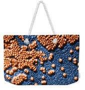 Hepatitis Virus Weekender Tote Bag