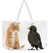 Jackdaw And Kitten Weekender Tote Bag