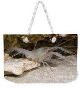 Mclanes Cave Crayfish Weekender Tote Bag