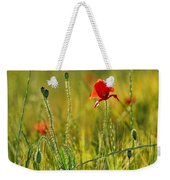 Poppies Weekender Tote Bag by Guido Montanes Castillo
