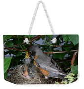 Robin Feeding Its Young Weekender Tote Bag