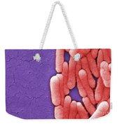 Salmonella, Sem Weekender Tote Bag