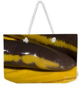 Southeast Asian Caecilian Weekender Tote Bag