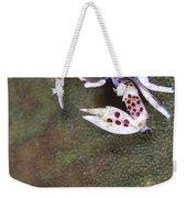 Spotted Porcelain Crab Feeding Weekender Tote Bag