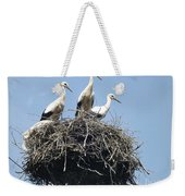3 Storks In The Nest. Lithuania Weekender Tote Bag