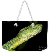 Two Striped Forest Pit Viper Weekender Tote Bag