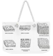 Types Of Epithelial Cells Weekender Tote Bag