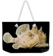 Warty Frogfish Weekender Tote Bag