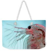 Water Flea Daphnia Magna Weekender Tote Bag