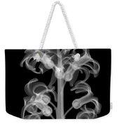 X-ray Of Hyacinth Weekender Tote Bag
