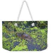 31- Alligator Hatchling Weekender Tote Bag